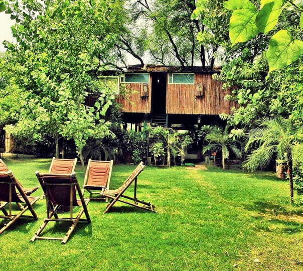 Luxury Stay at the Tree House Resort, Jaipur