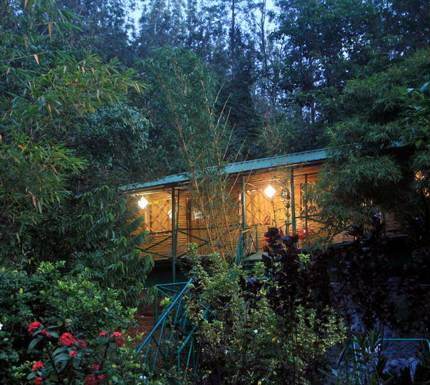 Nature Homestay Amidst the Hills, Chikmagalur