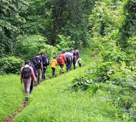 Birding Expedition at Dr. Salim Ali Bird Sanctuary in Thakkekad