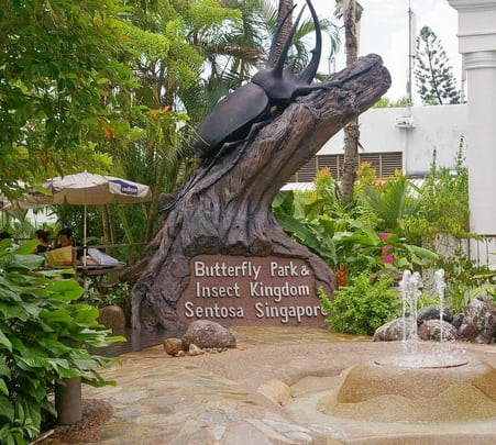 Ticket to Butterfly Park and Insect Kingdom