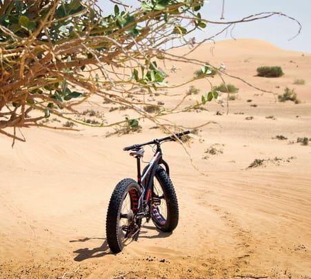 Desert Fat Bike Ride in Dubai