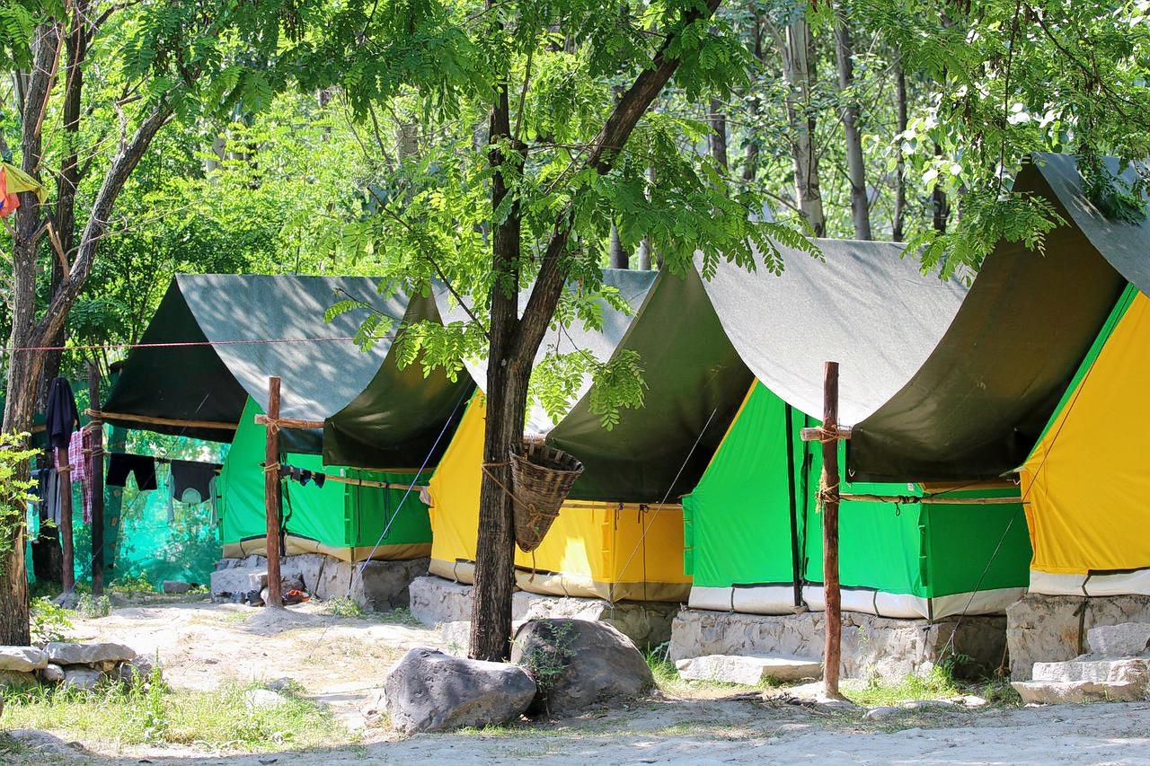 1574764262_camp-site-at-camp-jungle.jpg