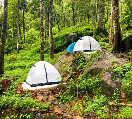 Wayanad Camping at Base of Chembra Peak - Flat 16% Off