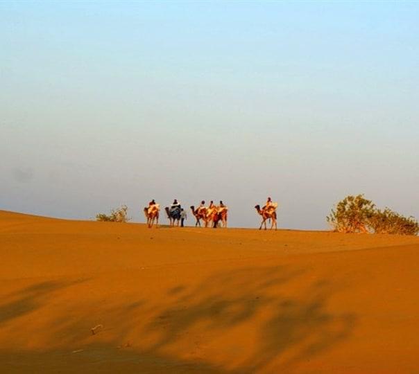 Royal Camel Safari Jaisalmer