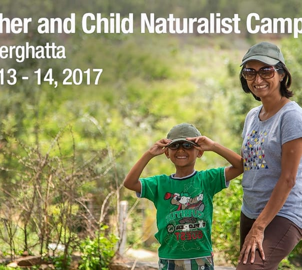 Mother and Child Naturalist Camp in Bannerghatta