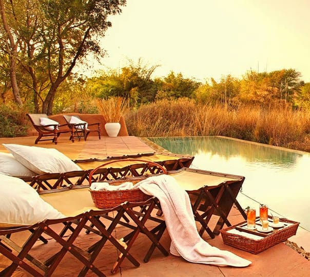 Lavish Stay at Sher bagh Ranthambore, Rajasthan