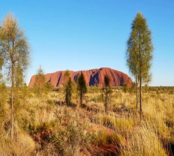 Sunrise Tour in the Red Center of Australia