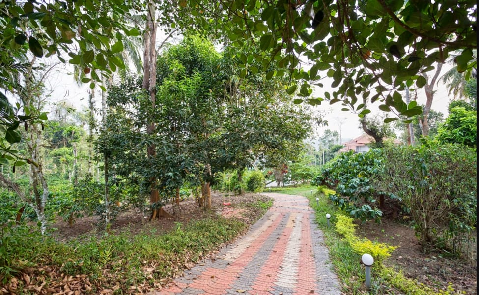 Boutique Stay In Coffee Plantations, Wayanad