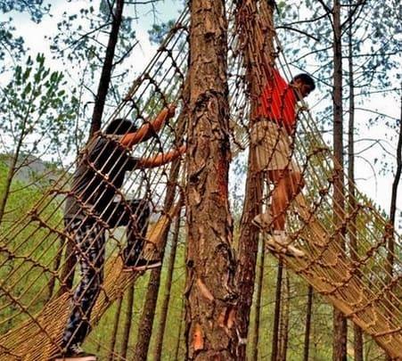 Commando Net Adventure Activity In Munnar