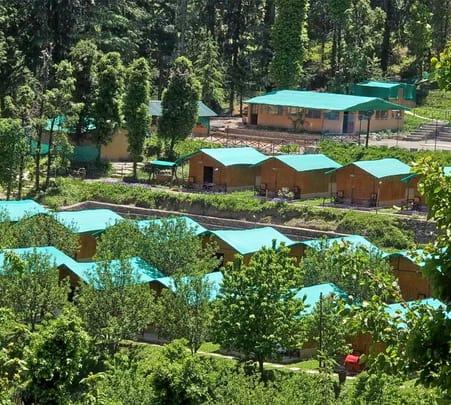 Nature Adventure Camp in Mashobra, Shimla