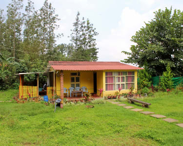 Homestay Amidst Silver Oak Trees, Chikmagalur