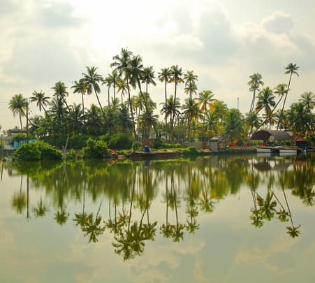 Day Trip to Kumbalangi-flat 33% off