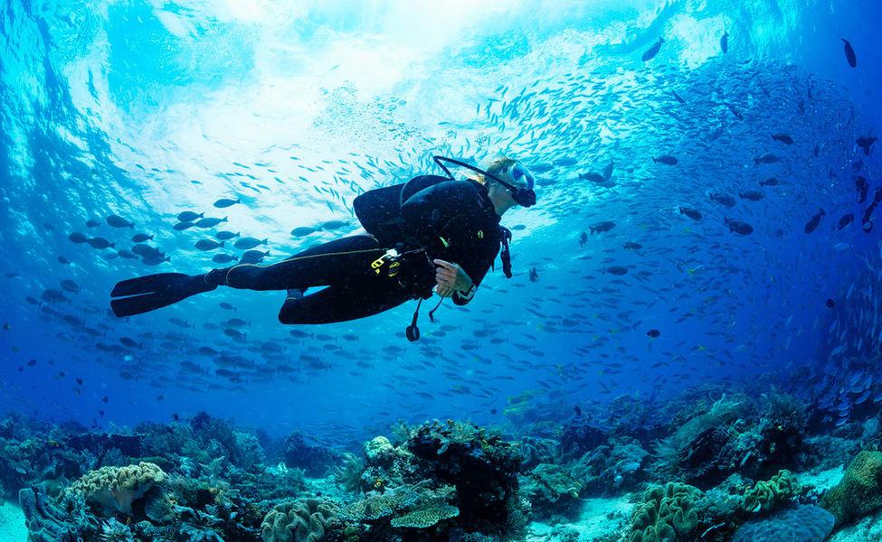 Scuba Diving Basics For Kids