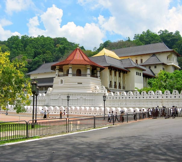 Sri Lanka Family Tour For 10 Days