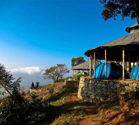 Camping Under Bambooed Roof in Munnar