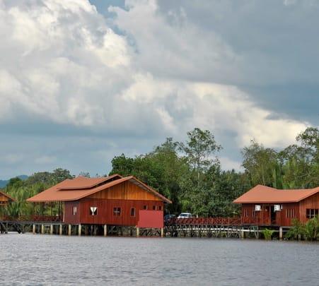Weston Wetlands Monkey, Sunset & Fireflies Cruise, Sabah