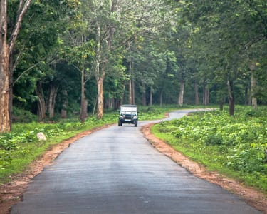 Offroad Jeep Safari to Mullayanagiri Coffee Estates - 23% Off
