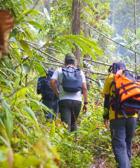 1539233453_trekking_jungle.jpg