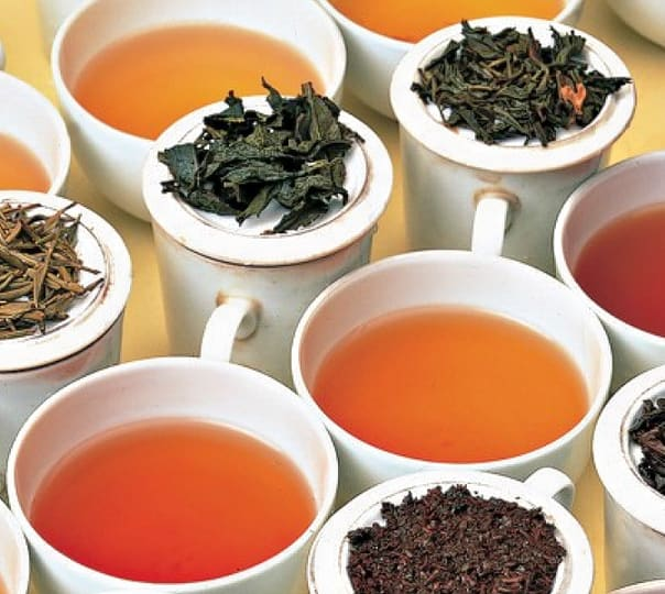 Tea and Herb Tasting Tour in Colombo