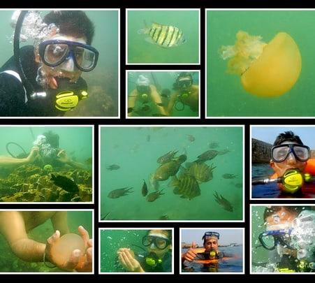 Scuba Diving Special Konkan Tour