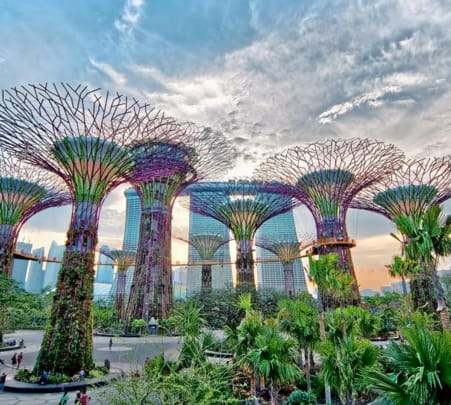 Combo: Gardens by the Bay with Marina Bay Sands Skypark & Singapore River Cruise