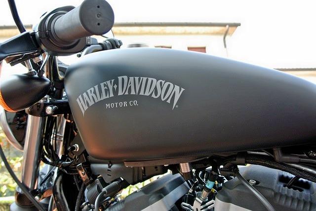 Harley_davidson_883_iron_3.jpg