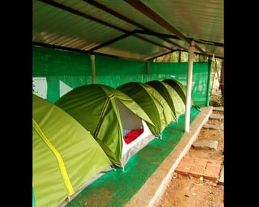 Camping in the Wild, Sakleshpur-flat 25% off