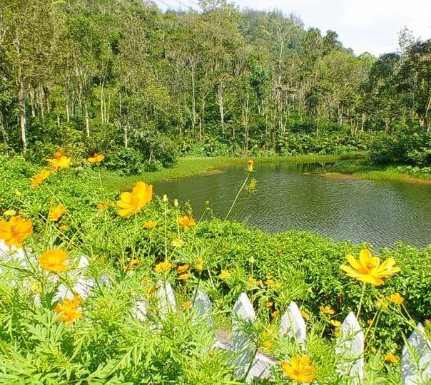 Stay at Tabernacle Plantation Resorts.