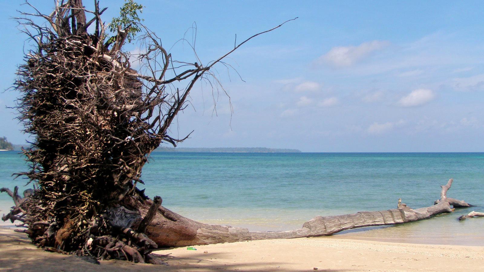1488289038_wandoor_beach.jpg
