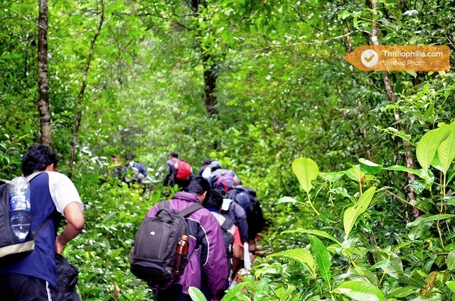 Kemmanagundi_trekking__chikmagalur_(8).jpg