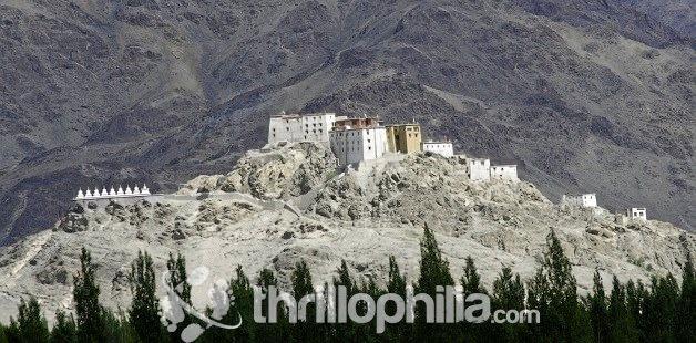 Shey_monastery__leh_ladakh.jpg