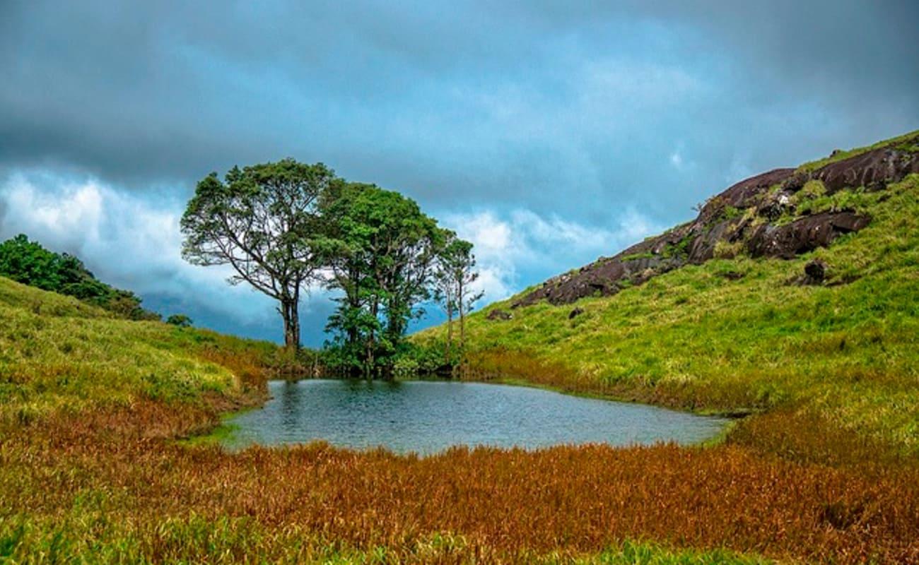Munnar Alleppey Tour Kerala Thrillophilia