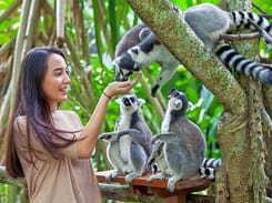 Bali Pulina Agro Tourism Bali 2019 Photos Reviews