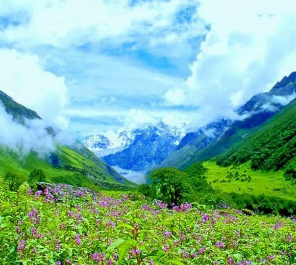 6 Days/5 Nights Trek to Valley of Flowers, Uttarakhand 2018