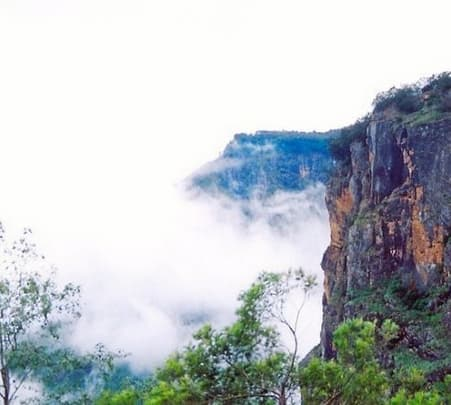 Guided Trek to Pillar Rocks,Kodaikanal