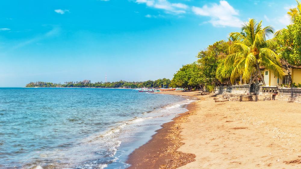 1547521194_lovina_beach_bali.jpg