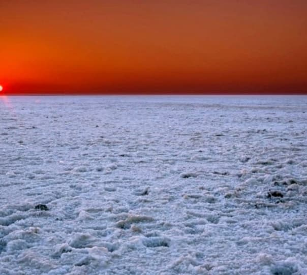 Little Rann of Kutch Safari, Gujarat