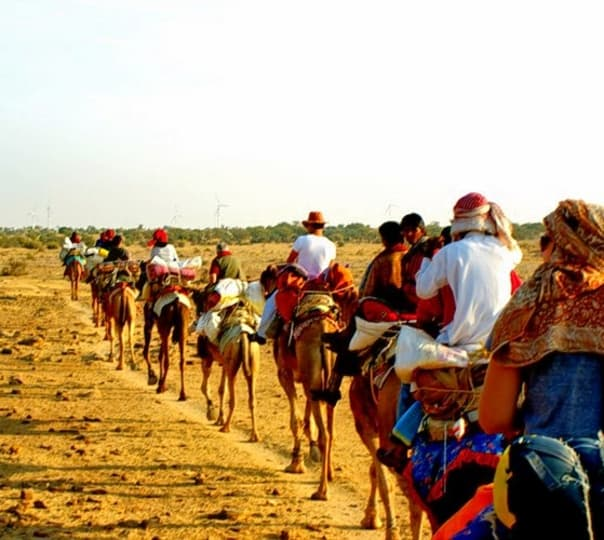 Royal Desert Safari Jaisalmer