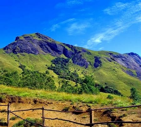 Sandal Valley Tour in Munnar