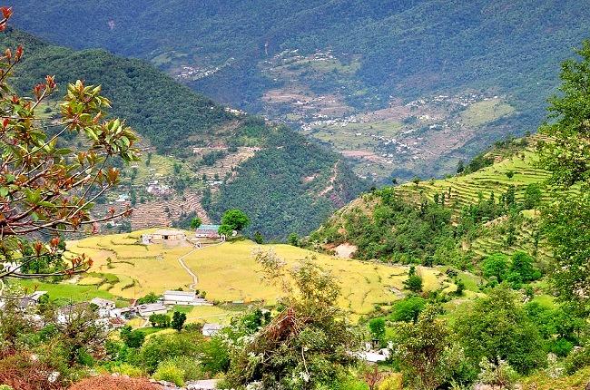 Chopta_-_chandrashilla_peak_5.jpg
