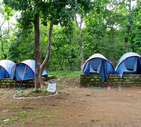 Jungle Camping Experience in Malwa near Indore