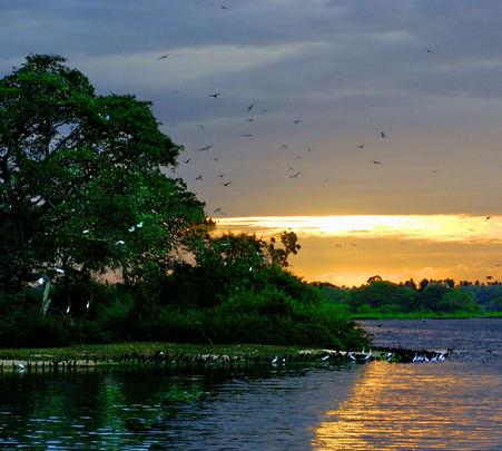 Bundala National Park Safari in Sri Lanka