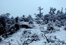 1461585818_trek_to_chandrashila_peak_via_tungnath_530.jpg