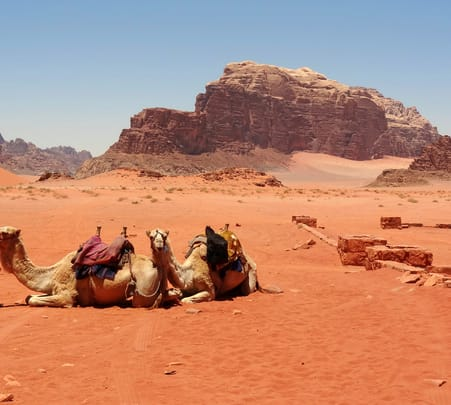 Camel's Expedition in Wadi Rum Flat 10% off