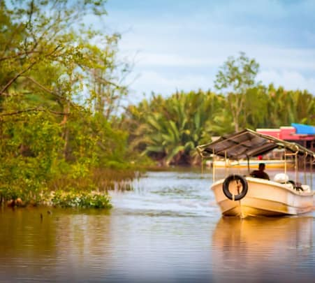 Kawa Wetland River Cruise in Malaysia