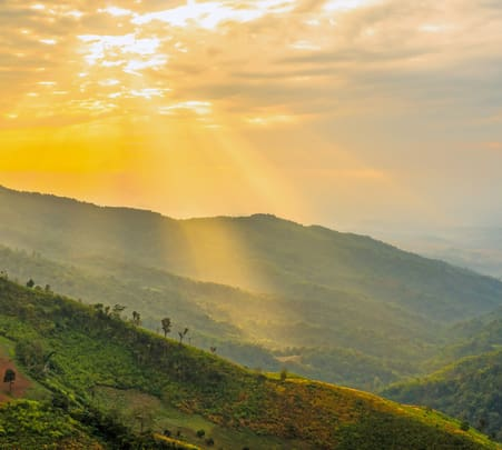 Adventure Camping in Wayanad - Flat 20% off
