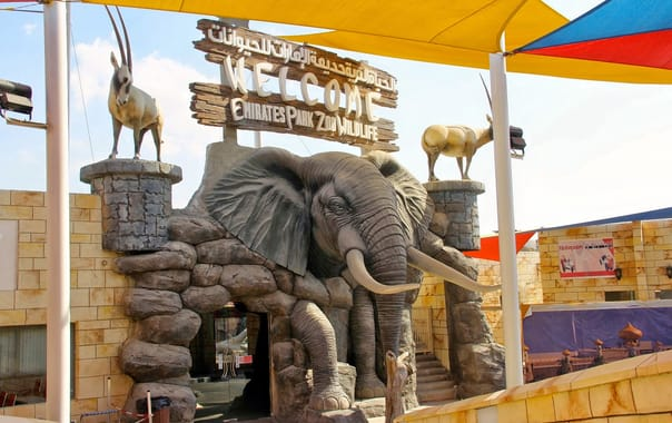 1566037431_emirates_park_zoo.jpg