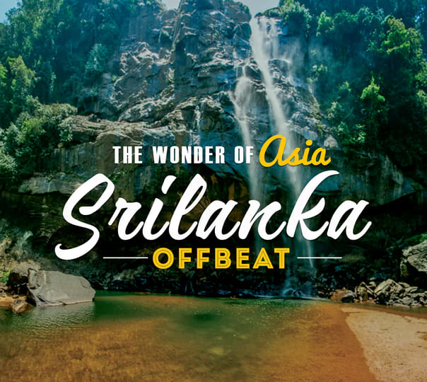 Sri Lanka Offbeat Cultural Triangle Tour