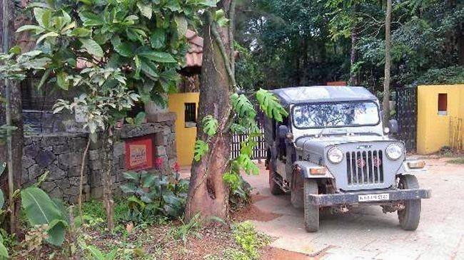 M_jeep_2.jpg