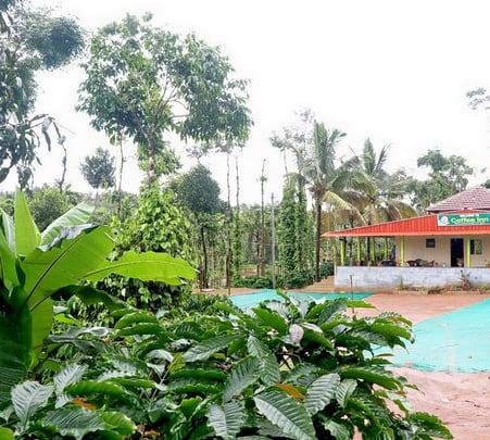 Coffee Plantation Homestay with Adventure Sports, Sakleshpur